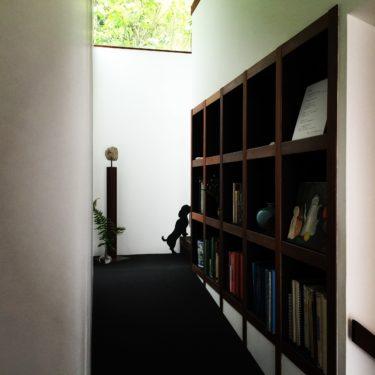 造り付け本棚 本で壁を埋め尽くす 5選